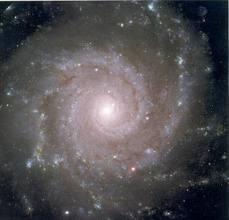 Big spiral 7
