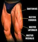 Campy thigh 2