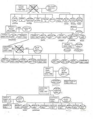 Hooper Family Tree[2]