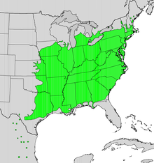 Syca map