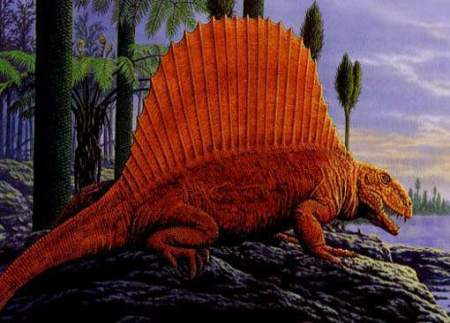 Dimetrodon-dinosaurs-22050780-510-367