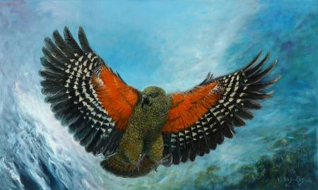 kea-new-zealand-peter-jean-caley