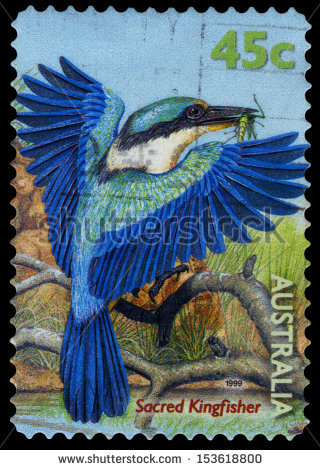 stock-photo-australia-circa-a-stamp-printed-in-australia-shows-a-sacred-kingfisher-bird-with-an-insect-153618800