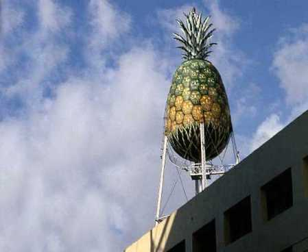 Pinapple water tower