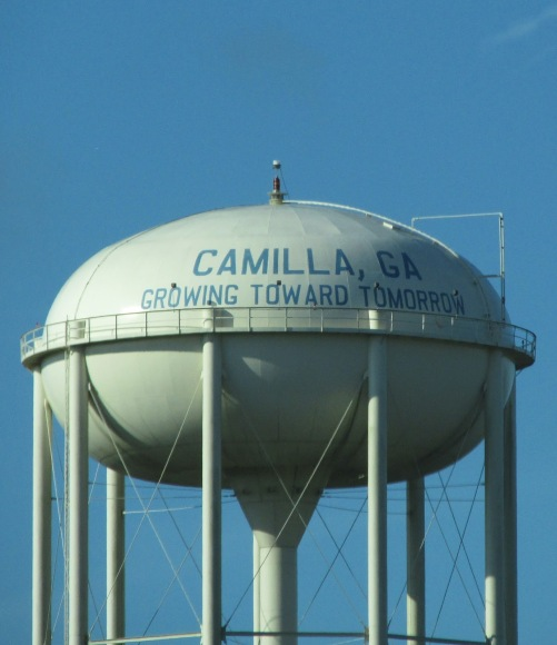 Image result for best water towers in usa
