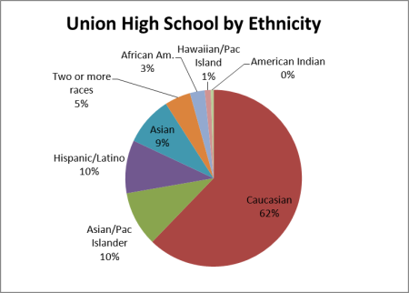 school by ethnicity