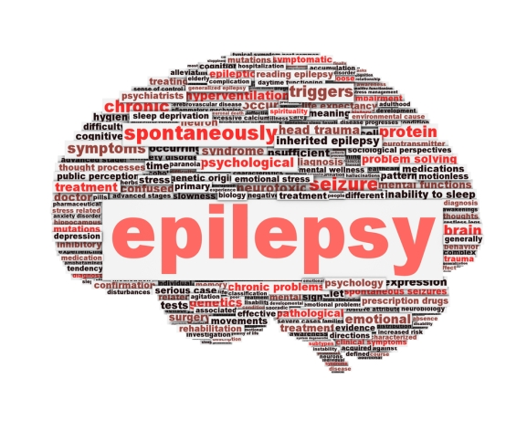 Epilepsy graphic organizer
