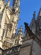 Burgos Out7