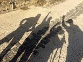 Shadow 03