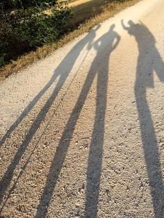 Shadow 23
