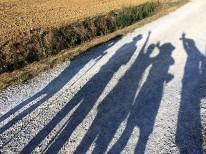 Shadow 25