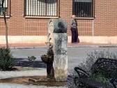 Statues 5-16