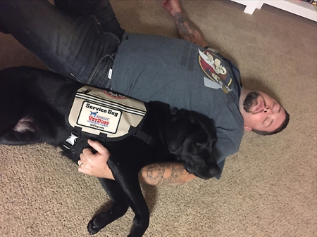 Service-Dog to the Rescue